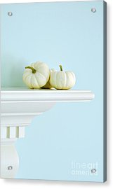 White Pumpkins Acrylic Print by HD Connelly