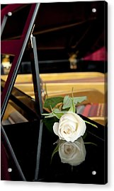 White Rose And Its Reflection Acrylic Print by Corepics