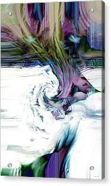 Why Acrylic Print by Linda Sannuti