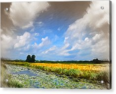 Wide Country Acrylic Print by Steve K