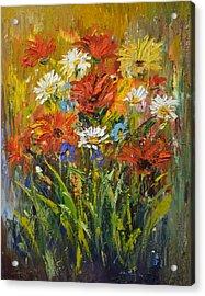 Wild Daisies Acrylic Print by Kathy  Cuiffi