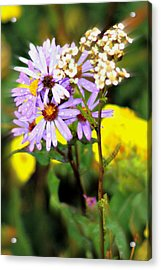 Wild Floral Acrylic Print by Marty Koch