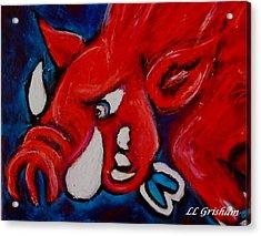 Wild Hog Acrylic Print by Laura  Grisham