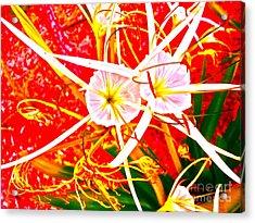 Wildflower Sea Acrylic Print by Chuck Taylor