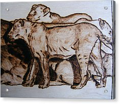 wildlife AFRICA-wood pyrography Acrylic Print by Egri George-Christian