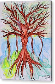 Willow Woman Acrylic Print by Die Go Learn