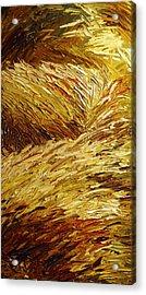 Windblown Grass Acrylic Print by Raette Meredith