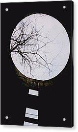 Windows To The Moon Acrylic Print by Jennifer Choate