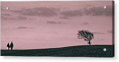 Windswept Acrylic Print by Justin Albrecht