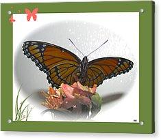 Wings Of Beauty Acrylic Print by Debra     Vatalaro