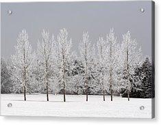 Winter, Calgary, Alberta, Canada Acrylic Print by Michael Interisano