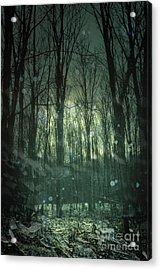Winter Forest At Twilight Acrylic Print by Sandra Cunningham