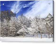 Winter Forest Covered With Snow Acrylic Print by Elena Elisseeva