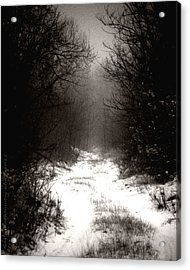 Winter IIi Acrylic Print by Mimulux patricia no
