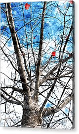 Winter Is Near Acrylic Print by Andee Design