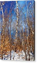 Winter Landscape I Acrylic Print by Celso Bressan