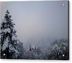 Winter Acrylic Print by Lucy D
