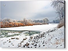Winter Red River 2012 Acrylic Print by Steve Augustin
