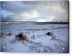 Winter Acrylic Print by Vala O