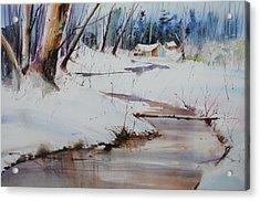 Winter Wonders Acrylic Print by P Anthony Visco