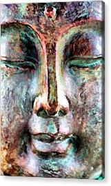 Wisdom Acrylic Print by Brian Davis
