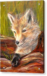 Wise As A Fox Acrylic Print by Laura Bird Miller