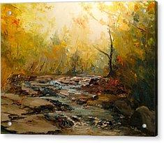 Wistful Waters Acrylic Print by Sarah Jane Conklin