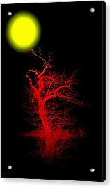 Witchwood Acrylic Print by Stefan Kuhn