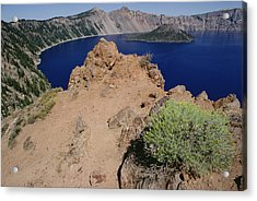 Wizard Island And Lake Shore, Mt Acrylic Print by Gerry Ellis