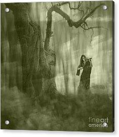 Wood Sonata Acrylic Print by Witaliy Sapeka