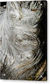 Wooden Fingerprint Eddies In The Grain Of An Old Log Like Whorls On A Finger Acrylic Print by Andy Smy