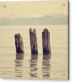 Wooden Piles Acrylic Print by Joana Kruse
