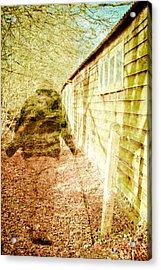 Woodland Ghost Acrylic Print by Tom Gowanlock