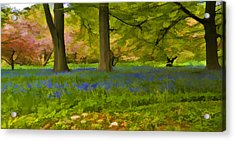 Woodland Watercolour Acrylic Print by Trevor Kersley