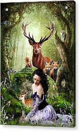 Woodland Wonders Acrylic Print by Julie L Hoddinott