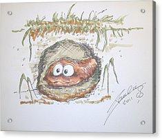 Wormhole Acrylic Print by Paul Chestnutt