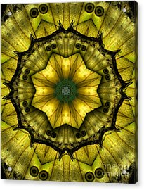 Yellow Butterfly Wing Kaleidoscope Mandala Acrylic Print by Janeen Wassink Searles
