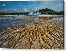 Yellowstone Blood Vessels Acrylic Print by Dan Mihai