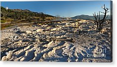 Yellowstone National Park - Minerva Terrace - 07 Acrylic Print by Gregory Dyer