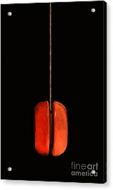 Yo-yo - Painterly Acrylic Print by Wingsdomain Art and Photography