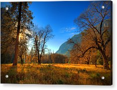 Yosemite National Park Acrylic Print by Eyal Nahmias