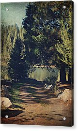 You'll Never Understand Acrylic Print by Laurie Search