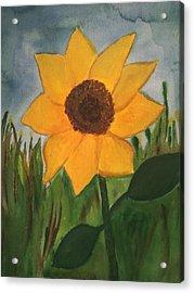 Your Sunflower Acrylic Print by Cara Surdi