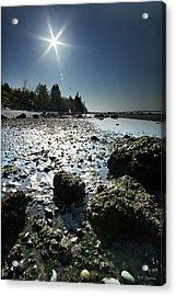 Birch Bay Beach Wa Acrylic Print by DMSprouse Art