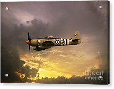 Hawker Sea Fury Acrylic Print by Stephen Smith