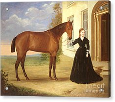 Portrait Of A Lady With Her Horse Acrylic Print by English School