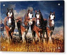 The Team Acrylic Print by Trudi Simmonds