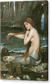 A Mermaid Acrylic Print by John William Waterhouse