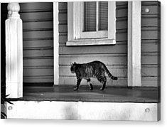 Across The Porch Acrylic Print by Jan Amiss Photography