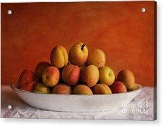 Apricot Delight Acrylic Print by Priska Wettstein